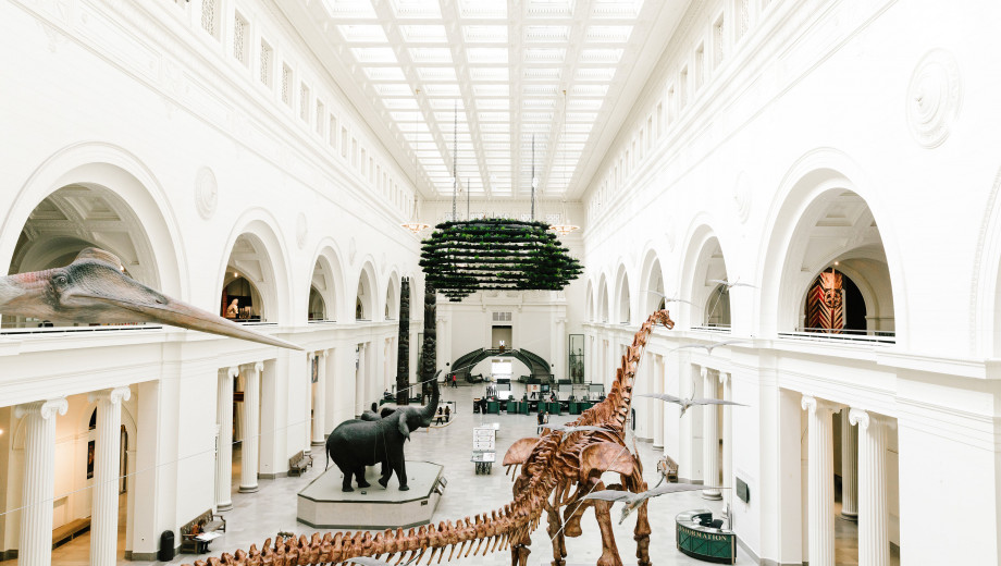 Máximo the titanosaur dominates a Field Museum exhibit, inspiring some visitors to mark the occasion in verse.